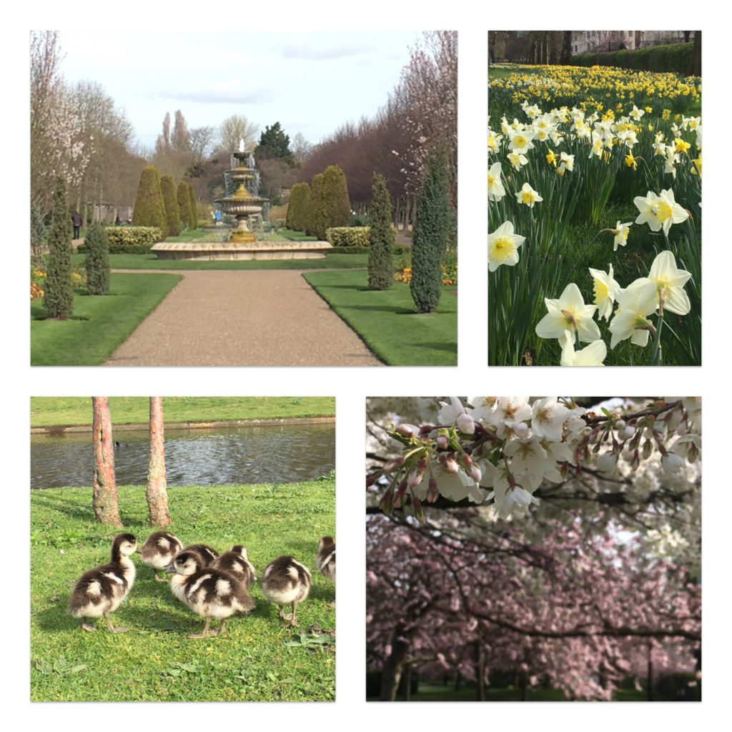 Regents Park Grand Family Getaways things to do for families London